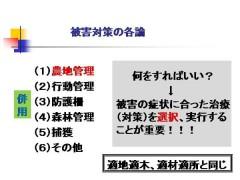 白井 図4