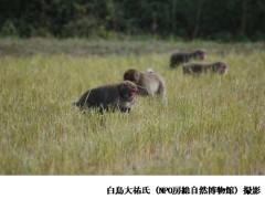 白井 写真7
